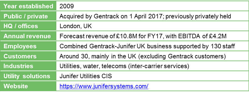 Junifer Systems key data