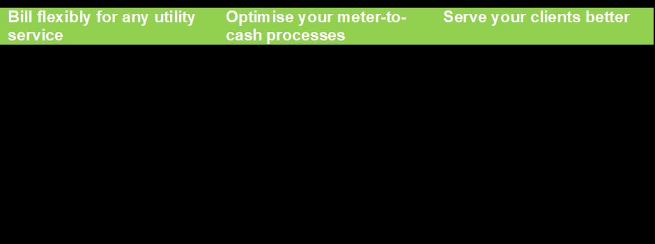 SkyBill utility billing benefits